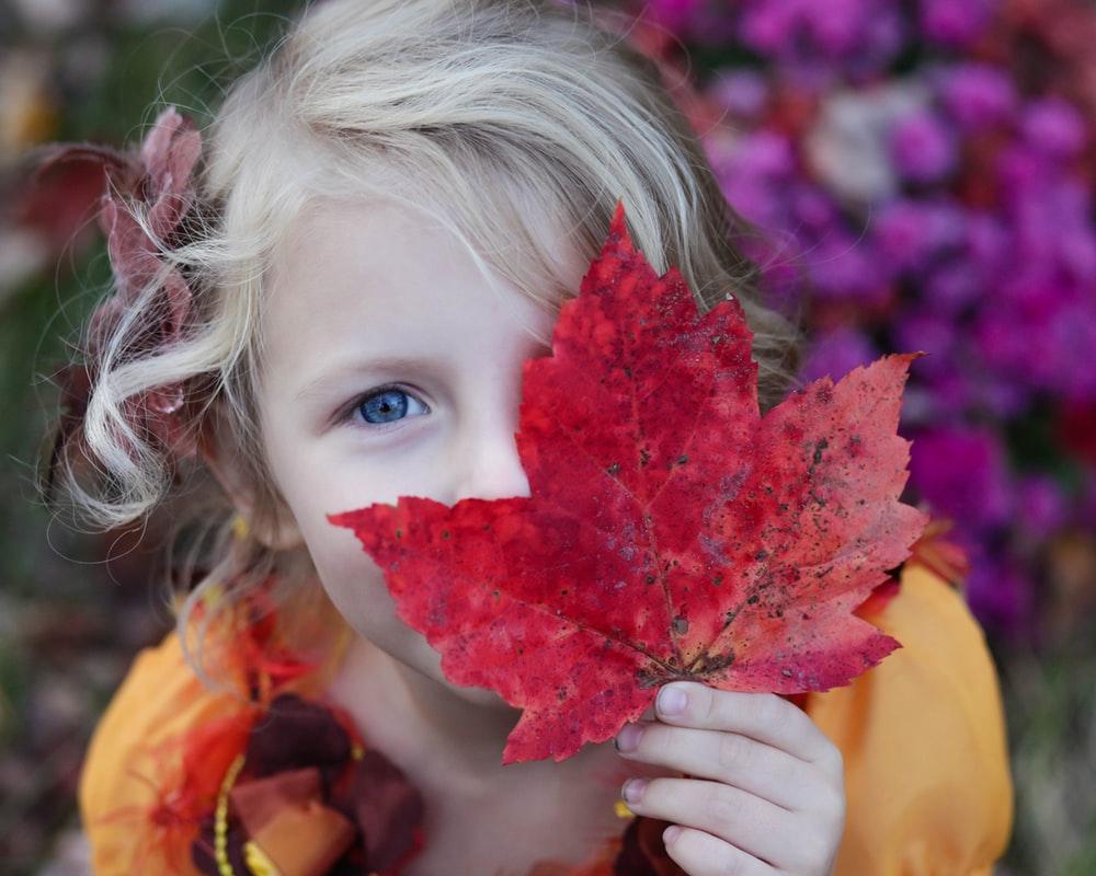 Samenwerkende Kinderopvang - Kind spelend met herfstbladeren